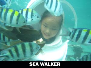 sea-walker-300x225